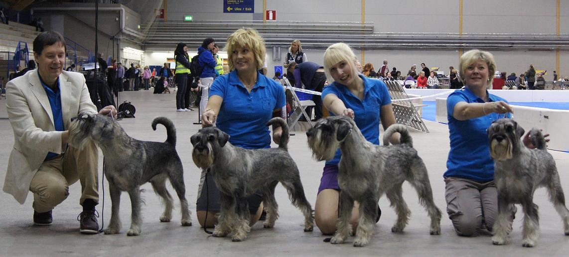 Breeders Class at Tampere int.dog show 13.5.12 : D.O.His Majesty, D.O.Molly Malone, D.O.Mad Max and D.O.Modesty Blaise.